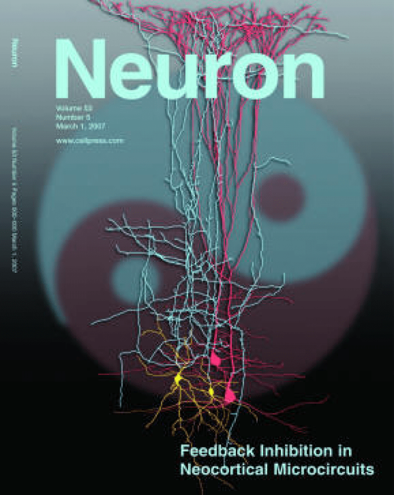 Cover of Neuron (Mar 01, 2007, Volume 53, Issue 5, p. 619-770)