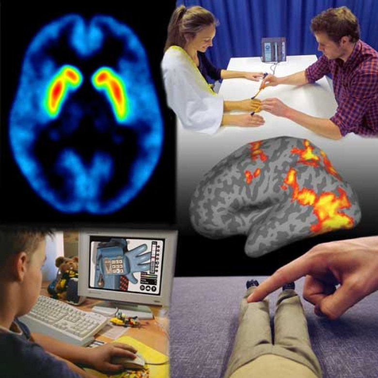 collage of images illustrating cognitive neuroscience