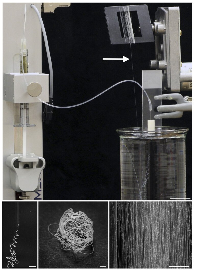 Biomimetic spinning of artificial spider silk