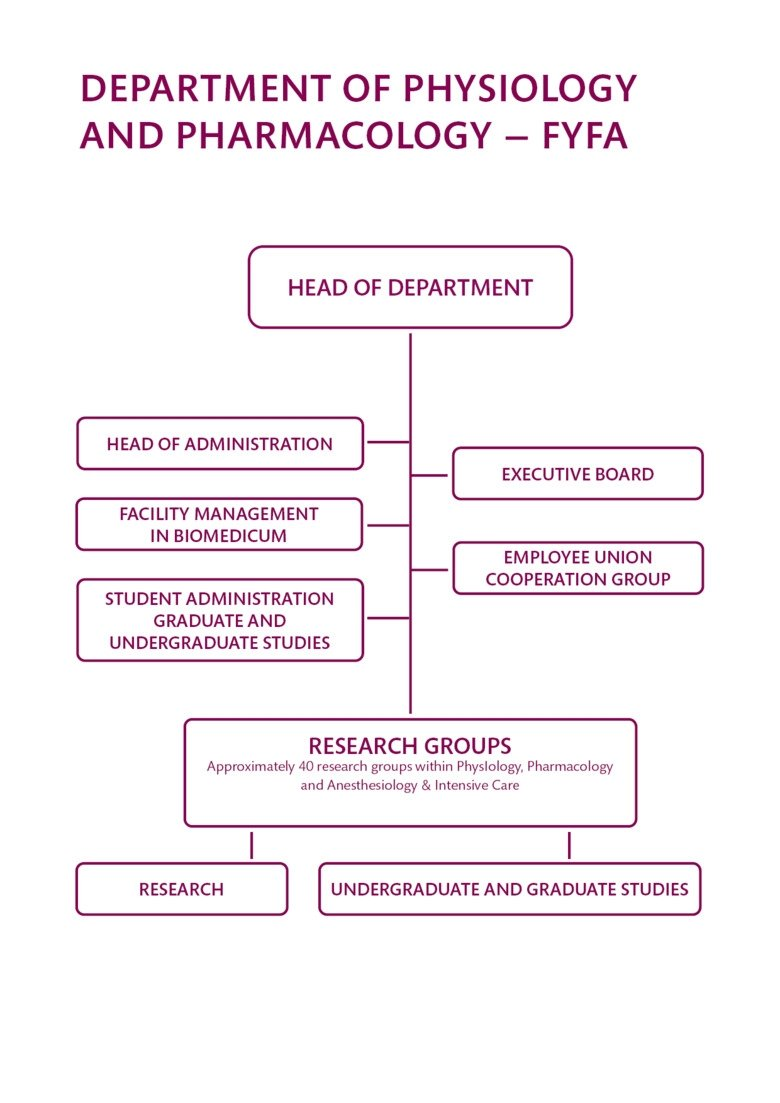organisation chart for the department of physiology and pharmacology.