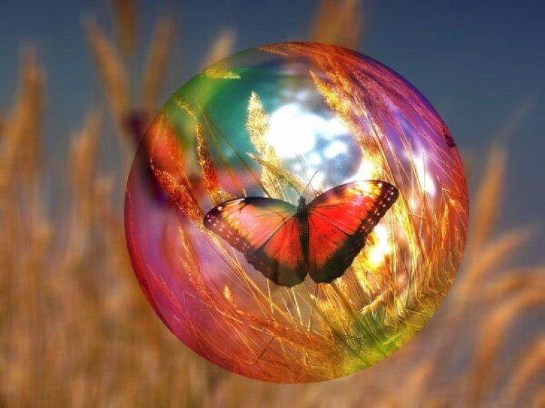 Image of a butterfly in a soap bubble.