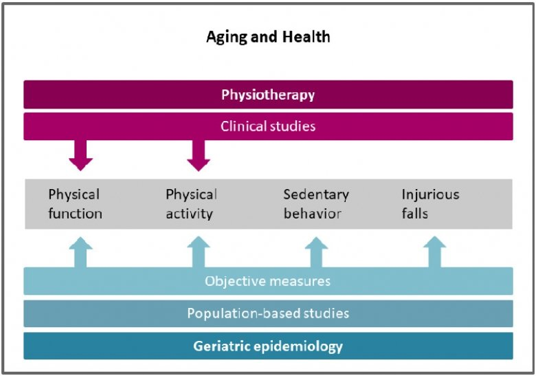 Aging and health, Welmer group